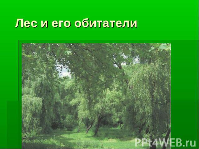 Лес и его обитатели