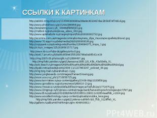 http://a6003.rimg.info/icon/153569300080a209a9e3632467dac2b59d7ef7481d.jpg http: