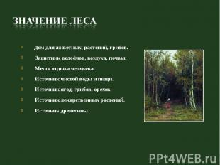 Дом для животных, растений, грибов. Защитник водоёмов, воздуха, почвы. Место отд