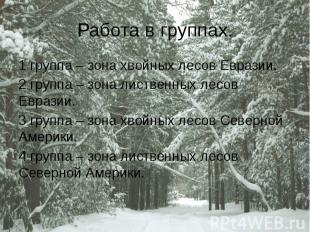 Работа в группах. 1 группа – зона хвойных лесов Евразии. 2 группа – зона листвен