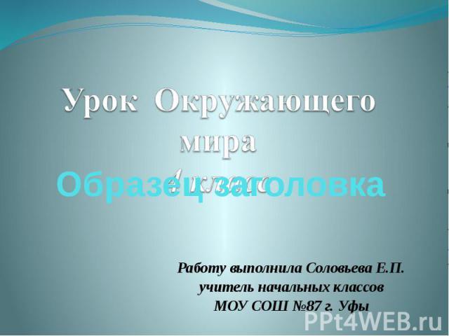 Работу выполнила Соловьева Е.П. учитель начальных классов МОУ СОШ №87 г. Уфы