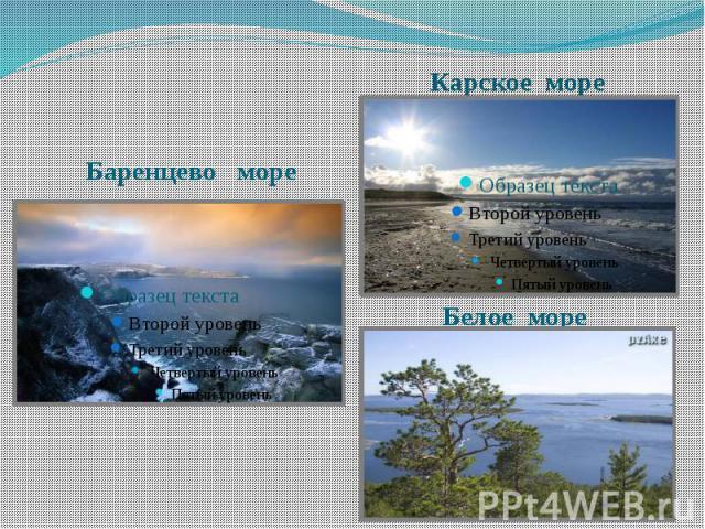 Белое море Баренцево море