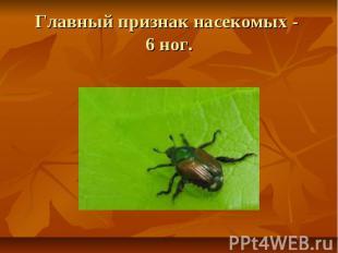 Главный признак насекомых - 6 ног.