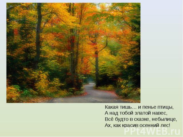 Какая тишь… и пенье птицы, А над тобой златой навес, Всё будто в сказке, небылице, Ах, как красив осенний лес! Какая тишь… и пенье птицы, А над тобой златой навес, Всё будто в сказке, небылице, Ах, как красив осенний лес!
