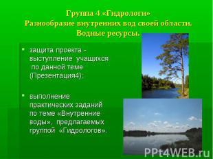 Группа 4 «Гидрологи» Разнообразие внутренних вод своей области. Водные ресурсы.