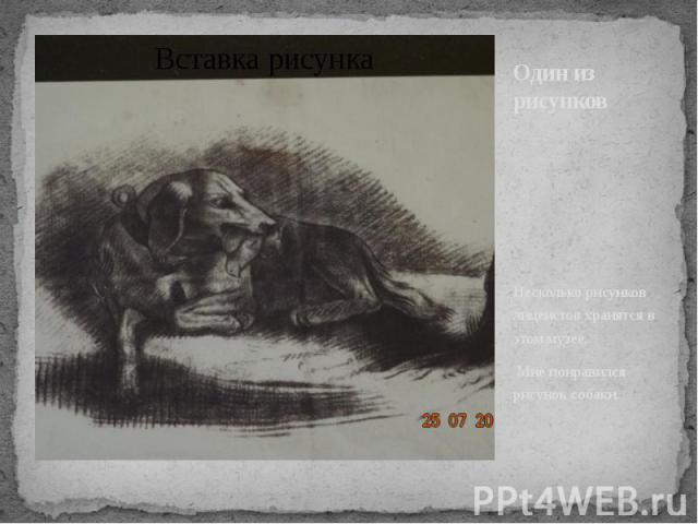 Один из рисунков Несколько рисунков лицеистов хранятся в этом музее. Мне понравился рисунок собаки.