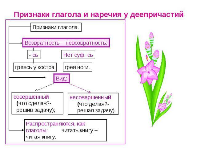 Признаки глагола и наречия у деепричастий