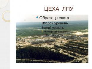ЦЕХА ЛПУ