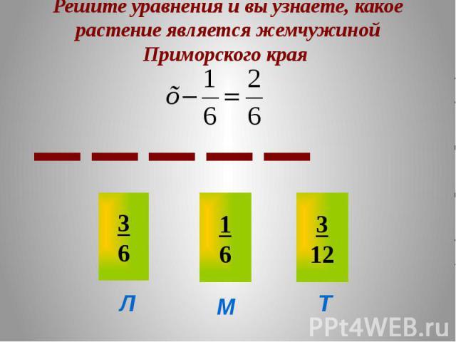 Решите уравнения и вы узнаете, какое растение является жемчужиной Приморского края