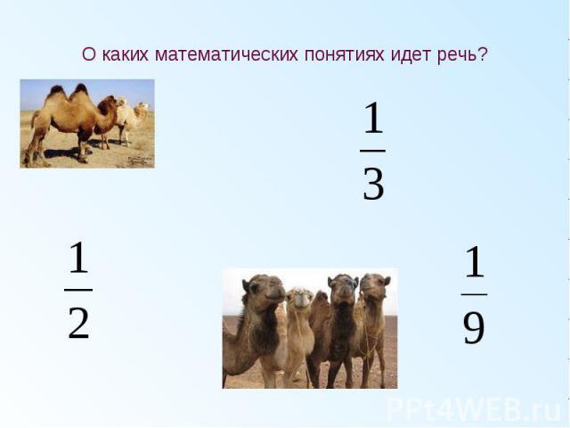 О каких математических понятиях идет речь?