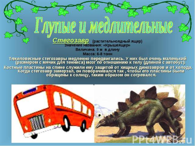 Стегозавр (растительноядный ящер) Стегозавр (растительноядный ящер) Значение названия: «Крышеящер» Величина: 9 м в длину Масса: 6-8 тонн Тяжеловесные стегозавры медленно передвигались. У них был очень маленький (размером с мячик для тенниса) мозг по…
