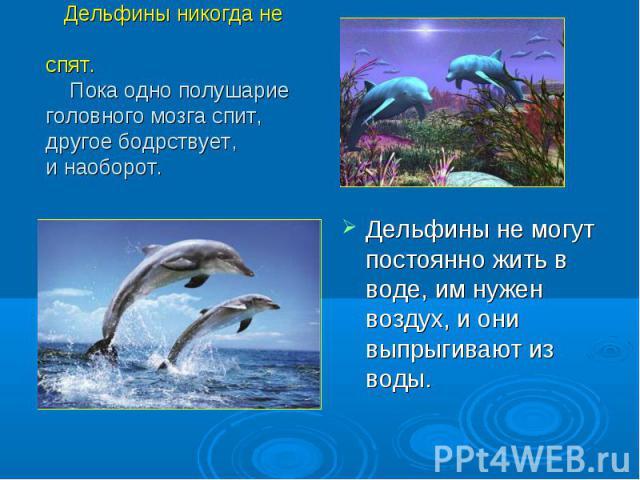 Дельфины не могут постоянно жить в воде, им нужен воздух, и они выпрыгивают из воды. Дельфины не могут постоянно жить в воде, им нужен воздух, и они выпрыгивают из воды.