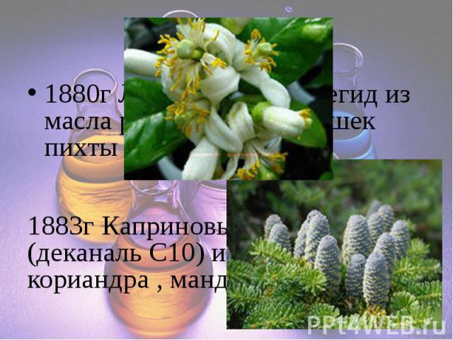 1880г Лауриновый альдегид из масла руты, лимона, шишек пихты 1883г Каприновый альдегид (деканаль C10) из масла кориандра , мандарина и лимона
