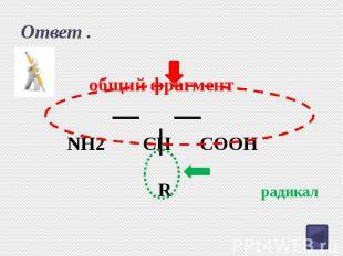 Ответ . NH2 CH COOH R