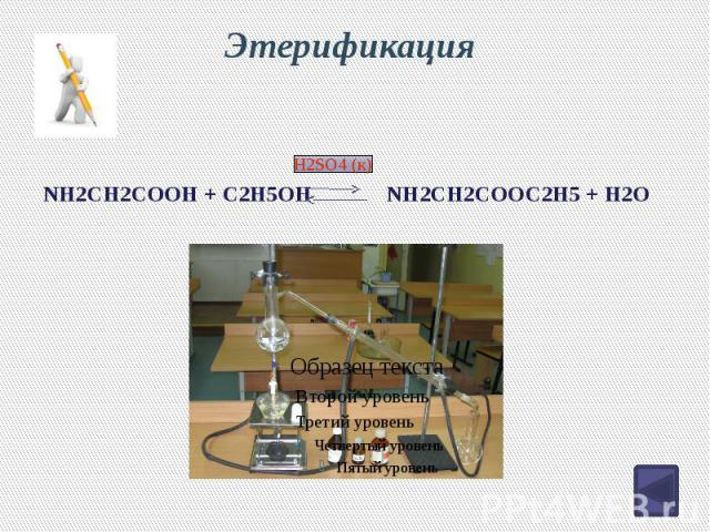 Этерификация NH2CH2COOH + C2H5OH NH2CH2COOC2H5 + H2O