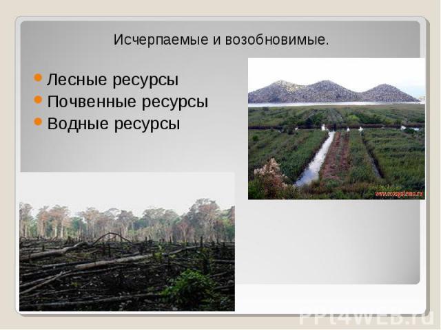 Исчерпаемые и возобновимые. Исчерпаемые и возобновимые. Лесные ресурсы Почвенные ресурсы Водные ресурсы