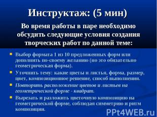 Инструктаж: (5 мин) Во время работы в паре необходимо обсудить следующие условия
