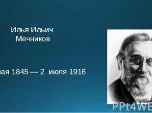 Илья Ильич Мечников 3 мая 1845 — 2 июля 1916