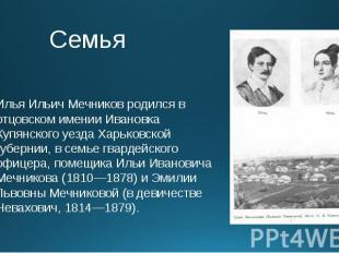 Семья Илья Ильич Мечников родился в отцовском имении Ивановка Купянского уезда Х