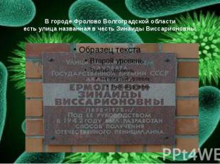 В городе Фролово Волгоградской области есть улица названная в честь Зинаиды Висс