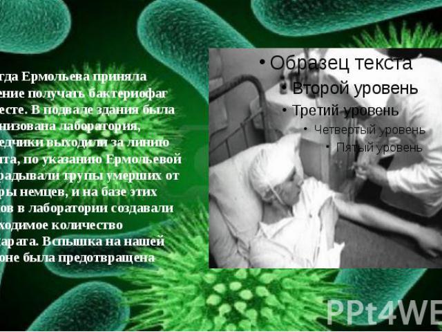 И тогда Ермольева приняла решение получать бактериофаг на месте. В подвале здания была организована лаборатория, разведчики выходили за линию фронта, по указанию Ермольевой выкрадывали трупы умерших от холеры немцев, и на базе этих трупов в лаборато…