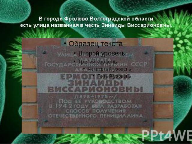 В городе Фролово Волгоградской области есть улица названная в честь Зинаиды Виссарионовны.