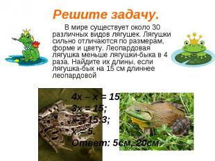 В мире существует около 30 различных видов лягушек. Лягушки сильно отличаются по