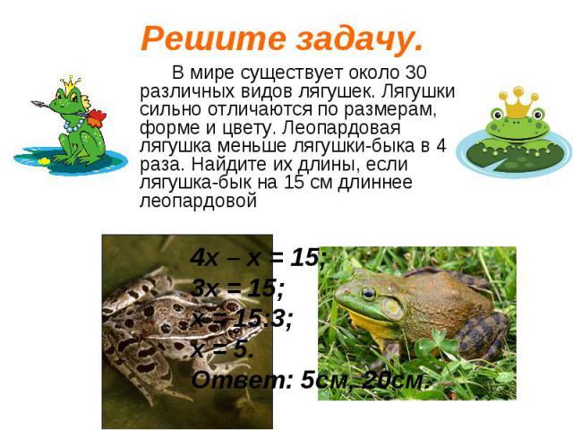 В мире существует около 30 различных видов лягушек. Лягушки сильно отличаются по размерам, форме и цвету. Леопардовая лягушка меньше лягушки-быка в 4 раза. Найдите их длины, если лягушка-бык на 15 см длиннее леопардовой В мире существует около 30 ра…