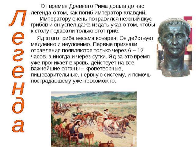 От времен Древнего Рима дошла до нас легенда о том, как погиб император Клавдий. Императору очень понравился нежный вкус грибов и он успел даже издать указ о том, чтобы к столу подавали только этот гриб. От времен Древнего Рима дошла до нас легенда …