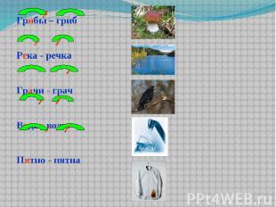 Грибы – гриб Грибы – гриб Река - речка Грачи - грач Вода - воды Пятно - пятна