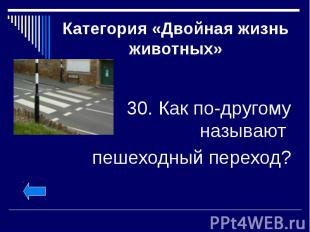 Категория «Двойная жизнь животных» 30. Как по-другому называют пешеходный перехо