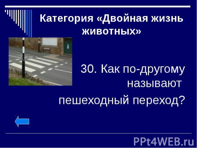 Категория «Двойная жизнь животных» 30. Как по-другому называют пешеходный переход?