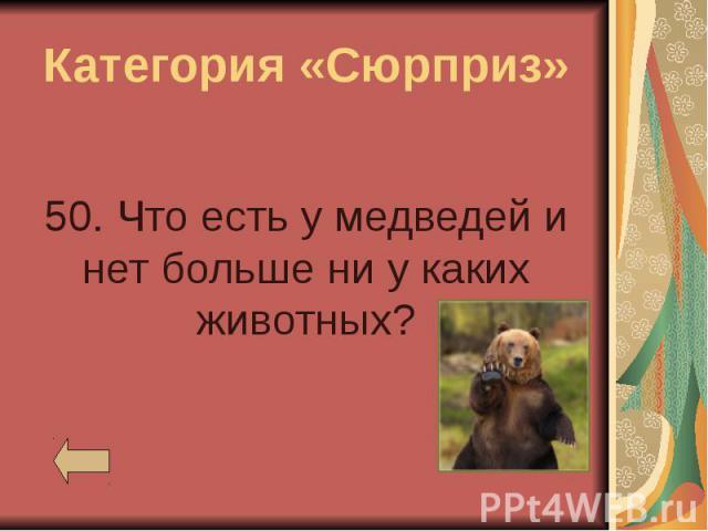 Категория «Сюрприз» 50. Что есть у медведей и нет больше ни у каких животных?