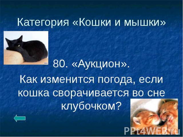 Категория «Кошки и мышки» 80. «Аукцион». Как изменится погода, если кошка сворачивается во сне клубочком?