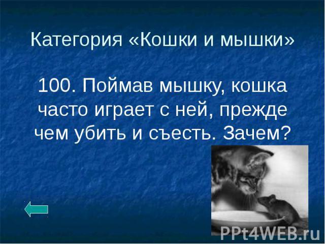 Категория «Кошки и мышки» 100. Поймав мышку, кошка часто играет с ней, прежде чем убить и съесть. Зачем?