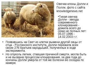 Появившись на Свет из клетки вымени другой овцы от отца - Рослинского института,