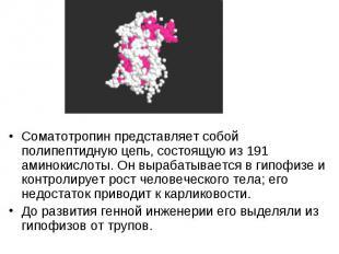 Соматотропин представляет собой полипептидную цепь, состоящую из 191 аминокислот