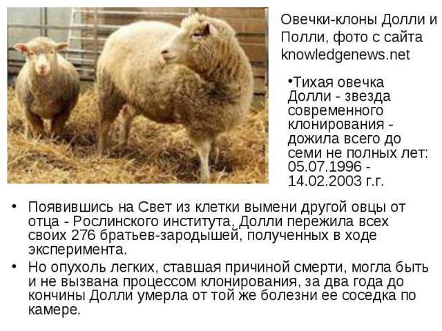 Появившись на Свет из клетки вымени другой овцы от отца - Рослинского института, Долли пережила всех своих 276 братьев-зародышей, полученных в ходе эксперимента. Появившись на Свет из клетки вымени другой овцы от отца - Рослинского института, Долли …