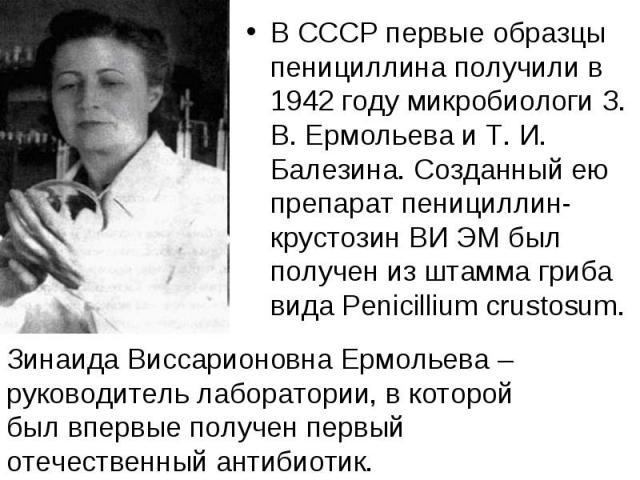 В СССР первые образцы пенициллина получили в 1942 году микробиологи З. В. Ермольева и Т. И. Балезина. Созданный ею препарат пенициллин-крустозин ВИ ЭМ был получен из штамма гриба вида Penicillium crustosum. В СССР первые образцы пенициллина получили…