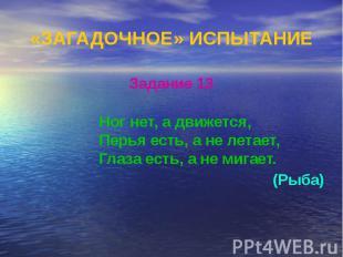 «ЗАГАДОЧНОЕ» ИСПЫТАНИЕ Задание 13