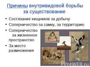 Причины внутривидовой борьбы за существование Состязание хищников за добычу Сопе