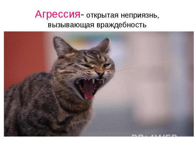 Агрессия- открытая неприязнь, вызывающая враждебность