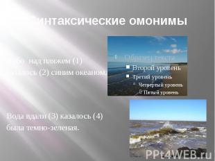Синтаксические омонимы Небо над пляжем (1) казалось (2) синим океаном. Вода вдал