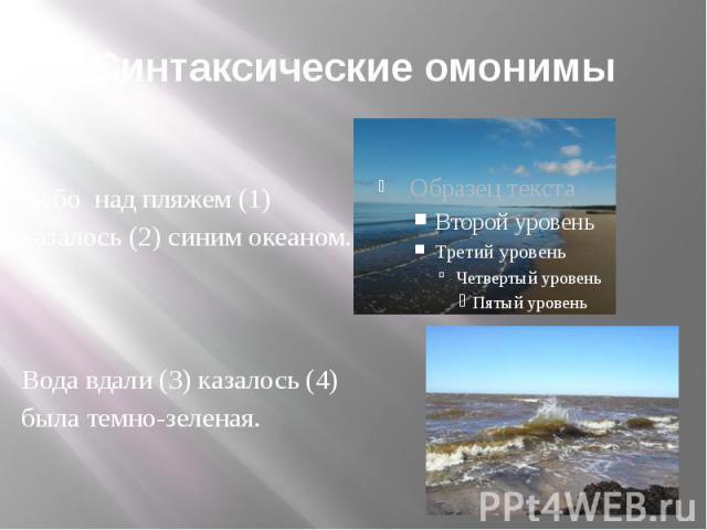Синтаксические омонимы Небо над пляжем (1) казалось (2) синим океаном. Вода вдали (3) казалось (4) была темно-зеленая.