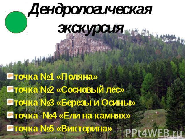 Дендрологическая экскурсия точка №1 «Поляна» точка №2 «Сосновый лес» точка №3 «Березы и Осины» точка №4 «Ели на камнях» точка №5 «Викторина»
