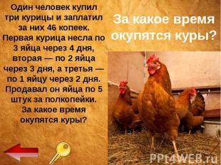 За какое время окупятся куры? Один человек купил три курицы и заплатил за них 46