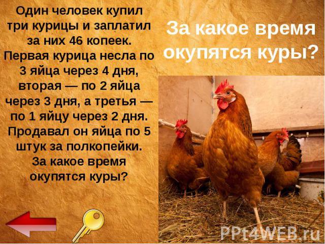 За какое время окупятся куры? Один человек купил три курицы и заплатил за них 46 копеек. Первая курица несла по 3 яйца через 4 дня, вторая — по 2 яйца через 3 дня, а третья — по 1 яйцу через 2 дня. Продавал он яйца по 5 штук за полкопейки. За какое …
