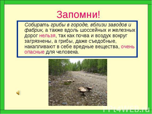 Запомни! Собирать грибы в городе, вблизи заводов и фабрик, а также вдоль шоссейных и железных дорог нельзя, так как почва и воздух вокруг загрязнены, а грибы, даже съедобные, накапливают в себе вредные вещества, очень опасные для человека.