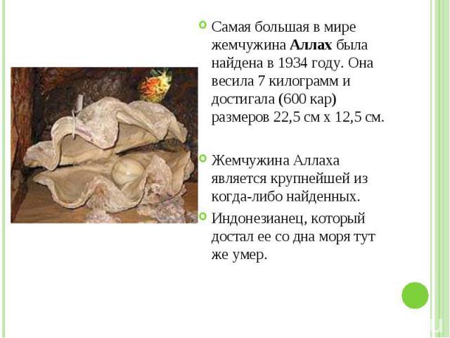 Самая большая в мире жемчужина Аллах была найдена в 1934 году. Она весила 7 килограмм и достигала (600 кар) размеров 22,5 см х 12,5 см. Самая большая в мире жемчужина Аллах была найдена в 1934 году. Она весила 7 килограмм и достигала (600 кар) разме…