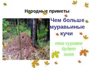 Чем больше муравьиные кучи Чем больше муравьиные кучи